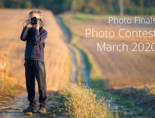 Photo Contest, March 2020